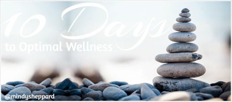 wellness_education_0
