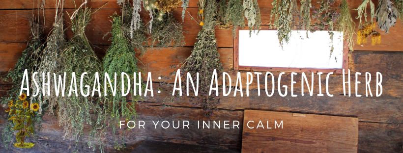 Ashwagandha an adaptogenic herb for your inner calm blog post